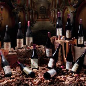 Santa Sofia - Klassische Veronese Weine